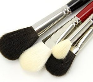 Silver Brush Mops